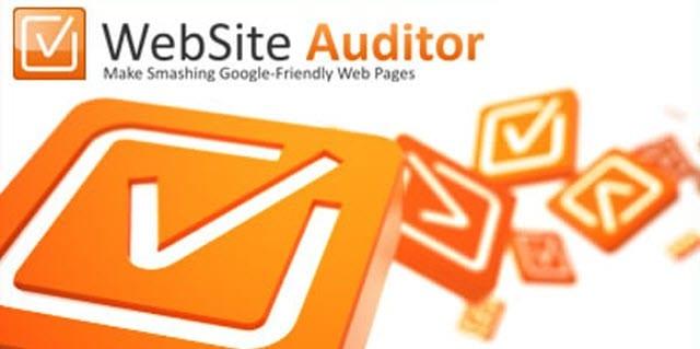 web auditor